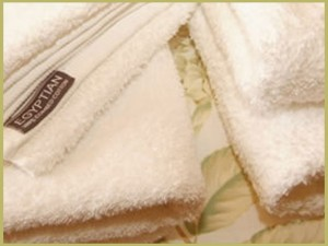 Towels-small